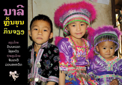 Naly's Hmong New Year book cover