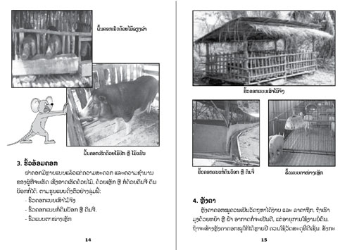 Samples pages from our book: How to Care for Pigs